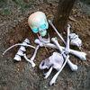 Halloween graveyard props BONE COLOR BAG OF BONES w/LED 14 PCS PLASTIC BONES