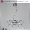 2013 new modern chandelier lighting fixture /pendant lamp/chandelier lighting