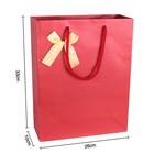 2014 New fashion design handbag paper gift bag