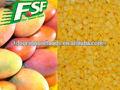 La nueva cosecha de mango iqf dados, frutacongelada manufucture