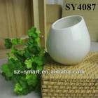 loveliest small wall hanging plant pot