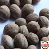 Nutmeg without shell whole nutmeg from Indonesia
