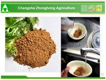25% Free Sample Bio Green Tea Extract Powder/Green Tea Extract For Sale