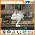 Tavşan yetiştiriciliği kafesi, tavşan yetiştirme kafesleri, ticari tavşan kafesleri