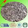 Vrac aviaire semences / graines de tournesol petite américain des semences