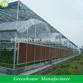 landwirtschaftliche gewächshäuser für tomaten