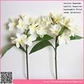 Gorgeous frangipani de la flor, Material de la PU de la guangzhou