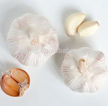 2014 crop white garlic natural garlic with good garlic price