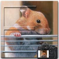Pet Oil Painting