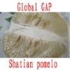 Sweet Fresh Shatian pomelo