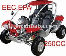 EEC Go Kart RLG1-250DS /DUNE BUGGY /ROAD LEGAL BUGGY