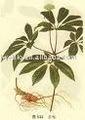 Lycium extrato, fructus lycii extrato, nome em latim: barbarum lycium l.
