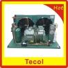 Bitzer air cooled freezer condensing units