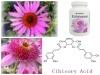 ISO/Kosher Echinacea Extract Immune Booster Medicines