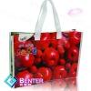Europe Standard Laminated China PP Woven Bag, pp woven sack bag,Fashion PP Woven Gift Bag For Foods