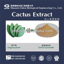 100% natural cactus extract caralluma fimbriata extract