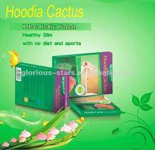 Hoodia herbal fat weight loss Patch NE 2013