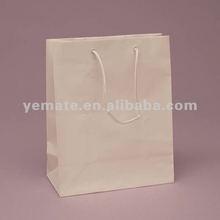 2012 hot paper shopping bag--BB50