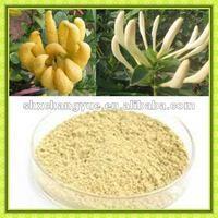 epimedium extract epimedium pubescens maxim p.e