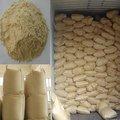 vital glúten de trigo
