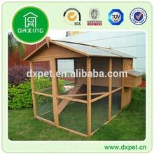 Carreras de palomas productos DXH011