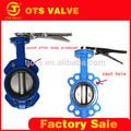 Bv-ly-0156 de hierro fundido de la grúa válvulademariposa aceite de agua de la válvula de gas