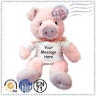 Peppa pig plush/stuffed peppa pig toy/mcdull pig