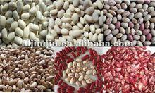 2014 kidney bean
