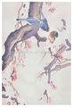 น้ำมันจีนภาพวาดสีน้ำมันนกสีชมพู
