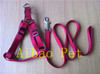 nylon dog lead leash in different colors from China factory