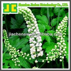 Black Cohosh Extract Powder 1.5%, 2.5% Triterpene