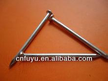 Fine zinc plated carbon steel Q195 common wire nails