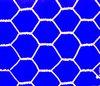 hexagonal wire mesh/80x100 hexagonal mesh/chicken coop hexagonal wire mesh