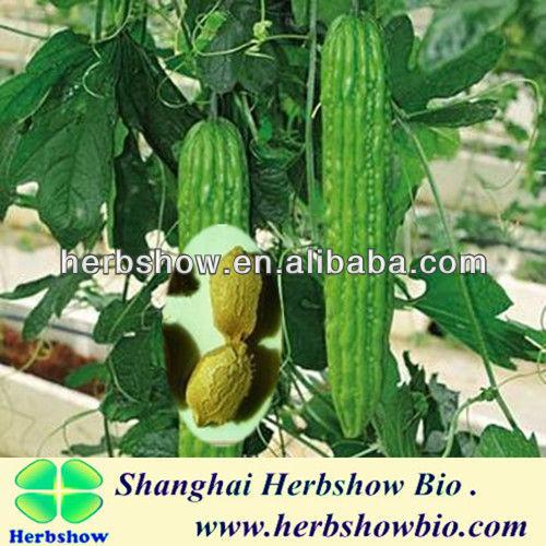 F1 Hybrid Bitter Melon Seeds for planting