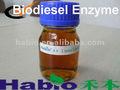 el biodiesel de la lipasa especializados
