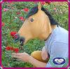 China Manufacturer Gold Latex Horse Costume / Horse Mask