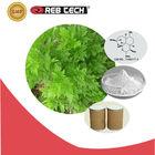 high quality natural Artemisinin powder