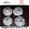 2014 Chinese fresh natural garlic price