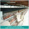 9WCD-3120 A - tipo galvanizado A quente camada de frango gaiola