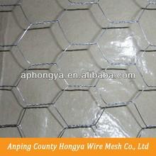 2015 China PVC Coated Iron Hexagonal wire Mesh