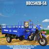 Triciclo BD250ZH-5A cargo tricycle Motocar motocarro mototaxi Triporteur trimoto furgon motocicleta bike 3 wheel rickshaw