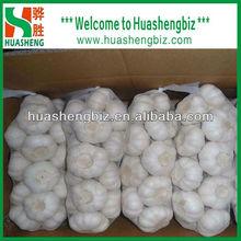 Exporting Chinese fresh natural garlic
