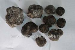 fresh desert truffles