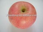 Yantai Red Fuji Apple 2013 Fresh Fruit