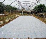 Soil Disinfection Film