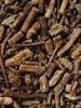 Sarsaparilla Root Extract Powder