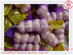 2014 Jinxiang fresh white garlic
