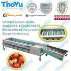 Fruit sorting machine cherry tomato grading sorting of fruit 0086-15903676975