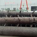 O homem- feito artificial seco tronco de árvore