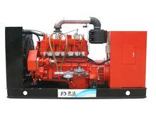 200kW CAMDA H Series Natural Gas Generator/ Biogas Generator Set/ Biomass Power Plant